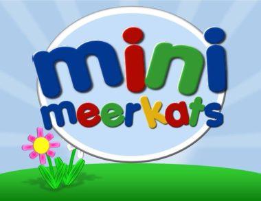 mini meerkats