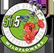 5in5wildflowers